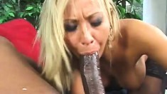 Cock-greedy white chick loves to swallow a black beaver basher