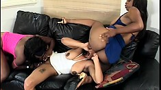 Hairy lesbian bitches get drilled with toys during a black threesome