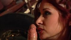 Two luscious cowgirls get their fiery asses drilled hard in the barn