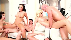 Babes get their pussies stuffed by bareback dicks in a sex party