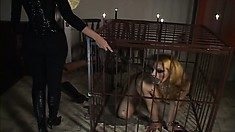 Tranny in some S&M gets tortured in the cage with wax, then gets blown