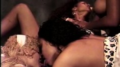 Chocolate Orgy With A Foursome Of Lusty Black Bitches And Sex Toys