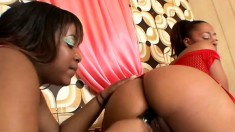 Horny black lesbians please each other's wet pussies with a big dildo