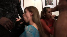 Striking young babes get their holes drilled rough by two black studs
