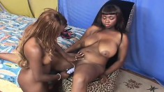 Big tit ebony lesbians try out their new vibrators and lick some twat