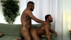 Lustful guy has a tattooed hunk hammering his tight ass on the couch