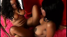 Busty black lezzies help each other reach orgasmic pleasure with sex toys